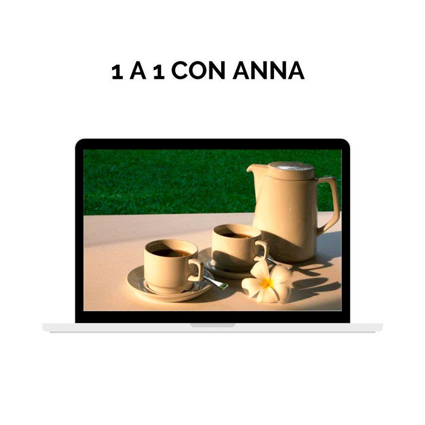 1a1-con-anna
